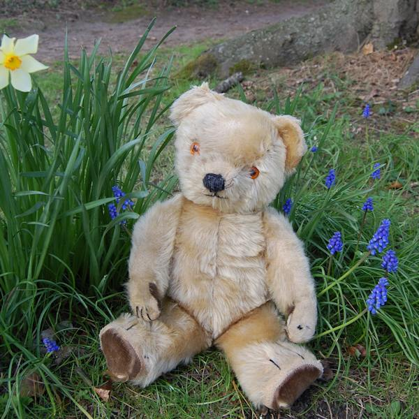 Hector a wonderful 1940 Chad Valley teddy bear in all original