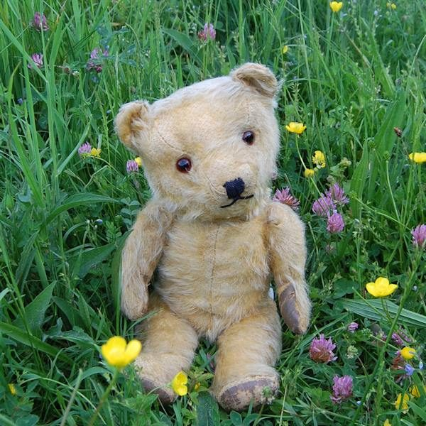 I was counting wild flowers but I've lost count, there are so many! Our sweet little 1940s Chiltern teddy bear adores the countryside.
