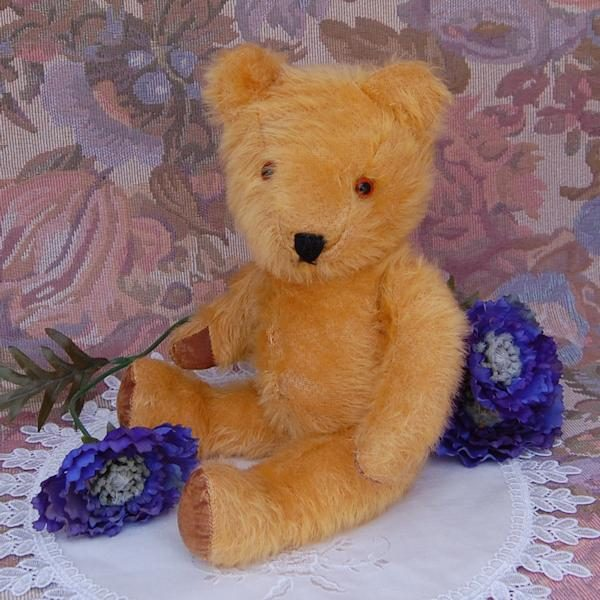 Sweet little English bear in lovely condition
