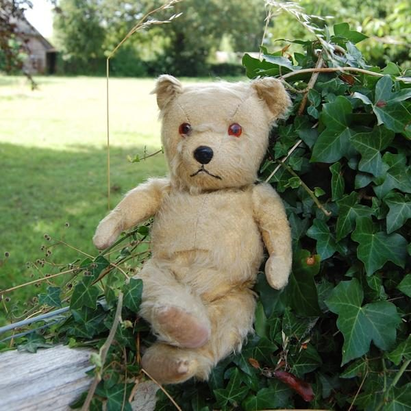 The adorable little Chiltern teddy bear, Henry reclining in the shade