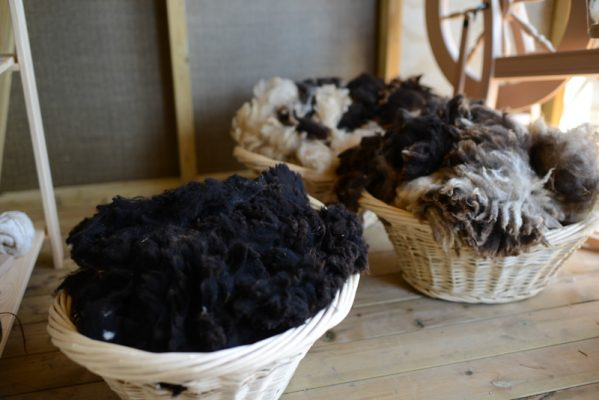 Black Welsh Mountain and Jacob sheep fleeces