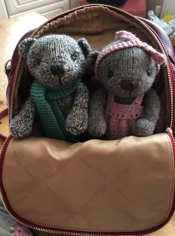Two little bears ready to go!