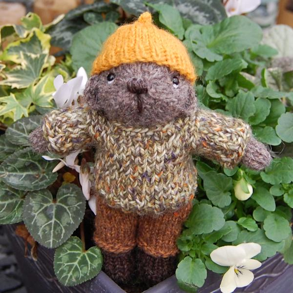 Little Humphrey hand knitted in rare breed North Ronaldsay wool - he is a cute little pocket size teddy bear