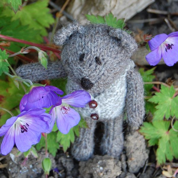Little Isaac hand knitted in North Ronaldsay wool