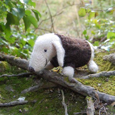 Albert modelling his cosy jumper