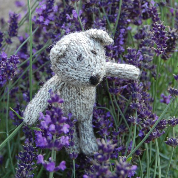 Hand knitted lavender filled teddy bear