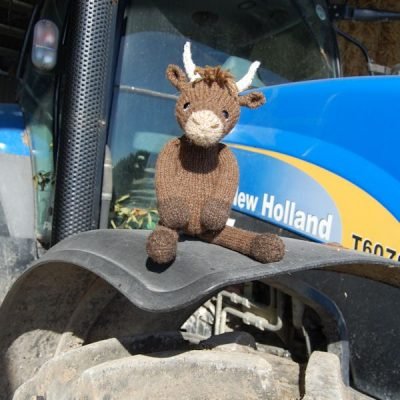 Our Highland cow - right at home on his tractor!