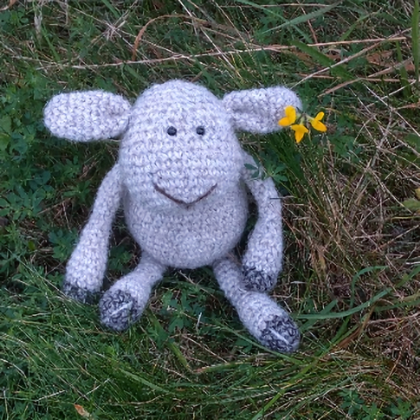 Little woolly sheep hand made fron pure North Ronaldsay wool - The Knitted Bear Company