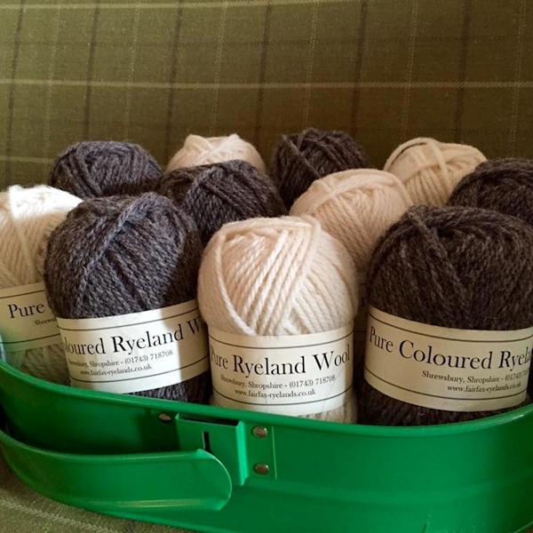 Zoe's wonderful Ryeland wool