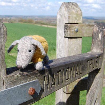 Cedric the Dachshund Dog - hand knitted from pure Shetland hand spun wool